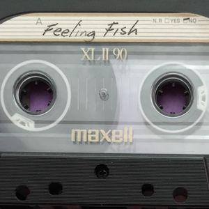 Feeling Fish B