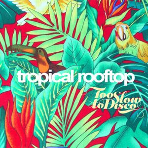 Tropical Rooftop Disco 2017 by DJ Supermarkt / Too Slow To Disco
