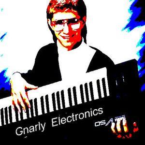 04/05/17 Gnarly Electronics - Binary Digit