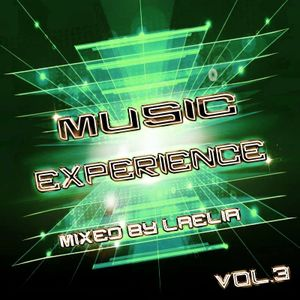 New Year Mix 2017 [Music Experience]