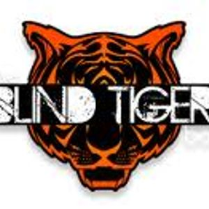 Live Mix @ Blind Tiger Bolton, 1st Feb 2013
