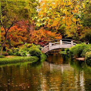 """Plug - 24/10/11 - 3^ puntata__""""Colors of Autumn""""__"""