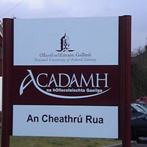 Clár Acadamh 20101101 cuid 2