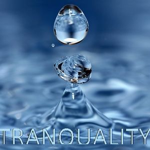 Techno-Tranquality Model 1
