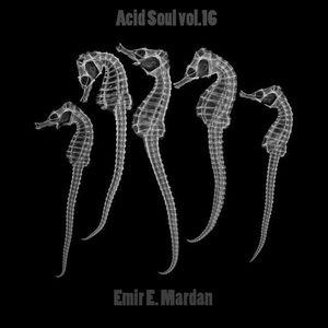 Acid Soul vol.16 by Emir E. Mardan