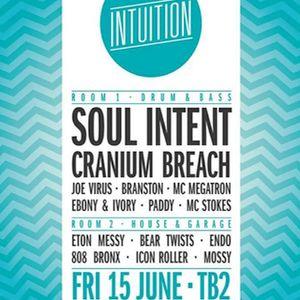 Joe virus and megatron live @ Intuition 15/6/2012
