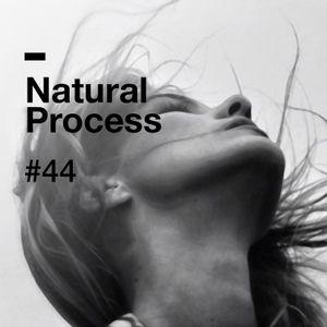 Natural Process #44