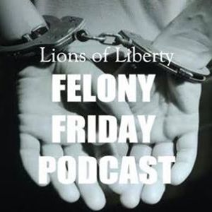 Felony Friday 036 - How the Drug Trade Landed a Successful Entrepreneur in Prison - Part 1
