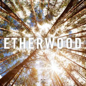 Etherwood live Shoreditch Studio London 11-8-2013
