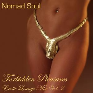 Forbidden Pleasures: Erotic Lounge Mix Vol. 2