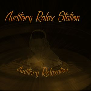 Auditory Relax Station #12: Yalla Disko with Dubnotic