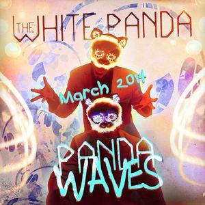 Panda Waves (Ep. #10)
