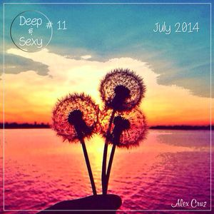 Alex Cruz - Deep & Sexy Podcast #11 - July 2014