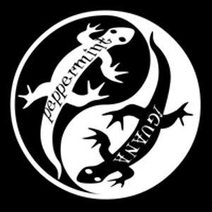 PEPPERMINT IGUANA RADIO # 125 - 30/08/16