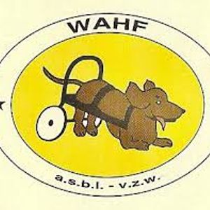 Emission 174 - La protection des animaux avec Gwenaëlle et Manon du refuge Wahf