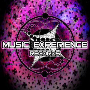 Dj Hedgehog-M E T(Music Experience Team)