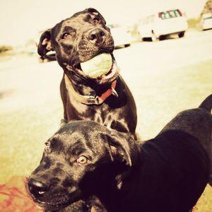 Jaina & Poncho on xxtasy 15-jun-2011