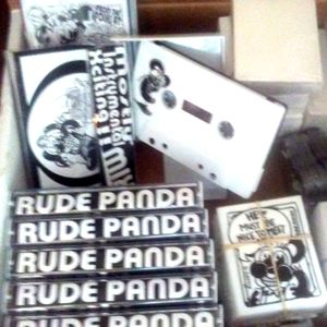 RUDE PANDA's MOSTLY INSTRUMENTAL XCITING! MIX ! !