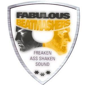 The Fabulous Beatmashers™ Promomix 2011 (80min Mashup Mega Mix)