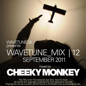 Wavetune Mix 12 mixed by Cheeky Monkey