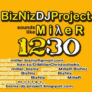MilleR - BizNiz DJ Project 1230
