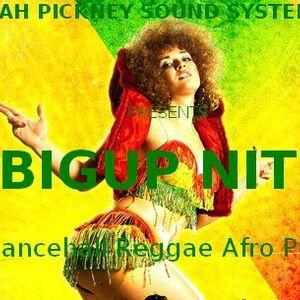Dancehall Celebration - Full mix