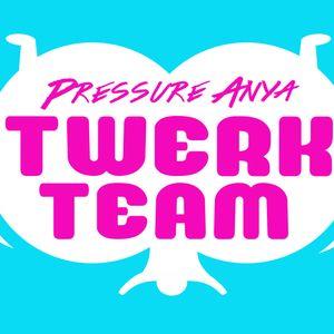 WinTwerk Mix 2013