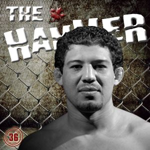 The Hammer MMA Radio - Episode 36