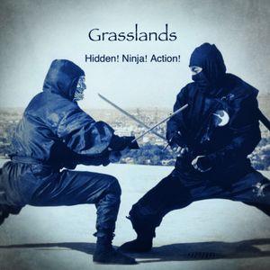Hidden! Ninja! Action! (Continuous Mix)
