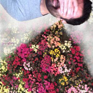 AMQ-Springtime