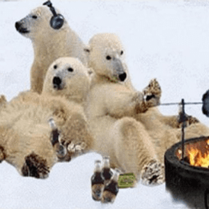 Climate Change, one for nights in by the fire