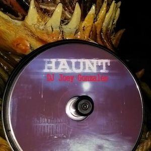 DJ Joey Gonzales - Haunt (2013)