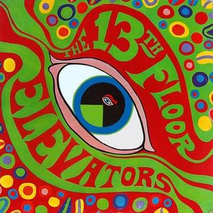 The 13th Floor Elevators :