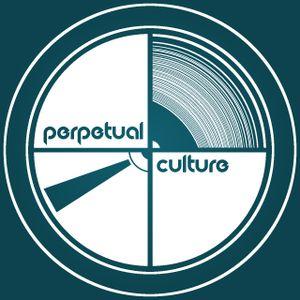 Perpetual Culture #004:  Paul Pring