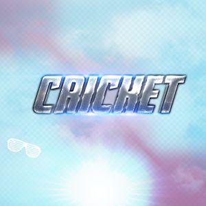 Cricket 4º Set