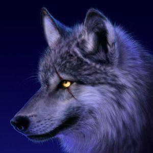 Lobo - Der mit dem Wolf tanzt (Volume 2)
