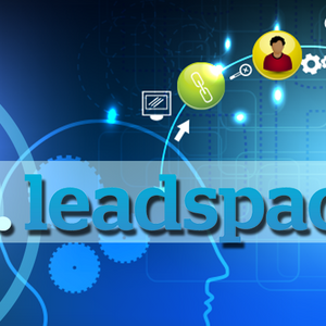 Focus On High Performance Marketing And Sales, An Interview For LeadSpace Radio