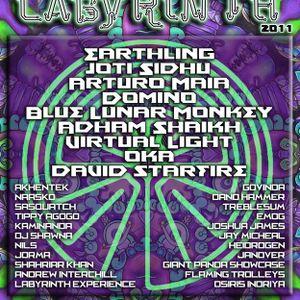 Live at the Labyrinth @ Shambhala Music Festival 2011