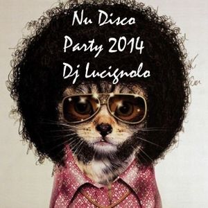 Nu Disco Party 2014 Dj Lucignolo