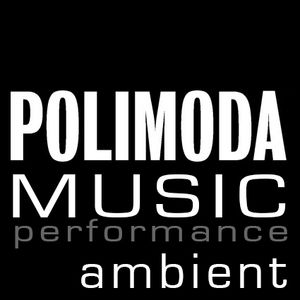 performance ambient POLIMODA 2015