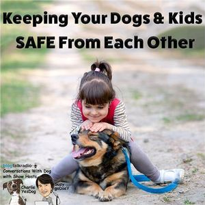 Keeping Kids and Dogs Safe from each other during the Holidays