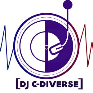 Dj C-Diverse presents Feeling the House music
