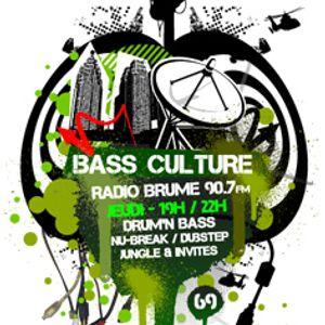 BASS CULTURE Lyon Ft Aknot & Soulstorm + la m3t4chronique - 04/11/2010 - Part 1