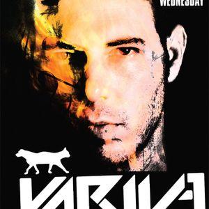 Yariv E 6 hours Solo Set @ The Cat & Dog Tel Aviv - Part I
