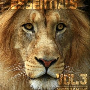 Essentials vol. 3 mixed by MANK