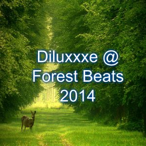 diluxxxe @ forest beats 2014