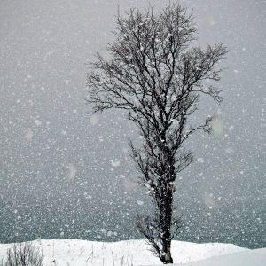 Binyo! - Hits snowin' Mix