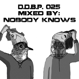 Digital Delight Barcelona Podcast 025 (Mixed by Nobody Knows)