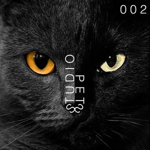 Gawyss - Studio Pets [002] Podcast, 12.08.2014