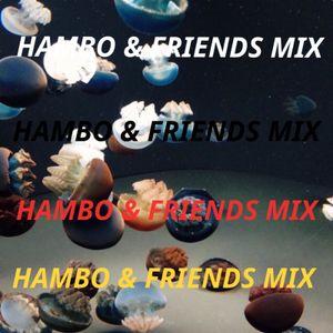 Hambo & Friends Mix